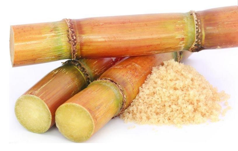 不懂得甘蔗的种植技术,甘蔗长不好还很细,该怎么办